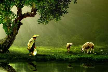 women-old-shepherd-nature-40873.jpeg